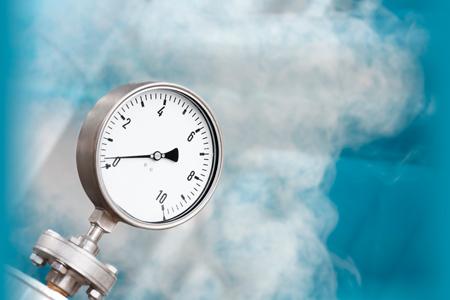 Steam Reforming for Hydrogen Generation